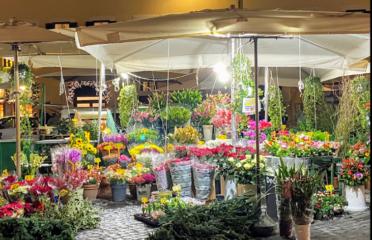 Pippo Campo de' fiori